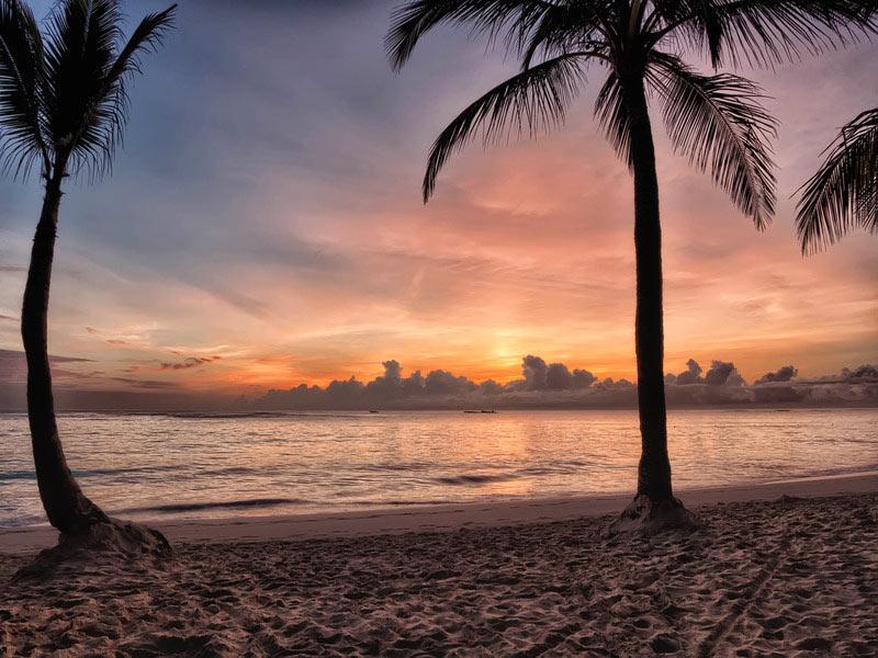 ZOnsondergang vanaf strand met palmbomen. Sfeerbeeld bij het blog: Introvert versus extravert waar zit jouw kracht van coach en relatietherapeut Lisette Wevers in Amsterdam