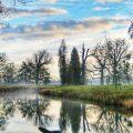 Bomen refecteren in het water van een riviertje. Sfeerbeeld bij het blog: Durven dromen na je scheiding van coach en relatietherapeut Lisette Wevers in Amsterdam