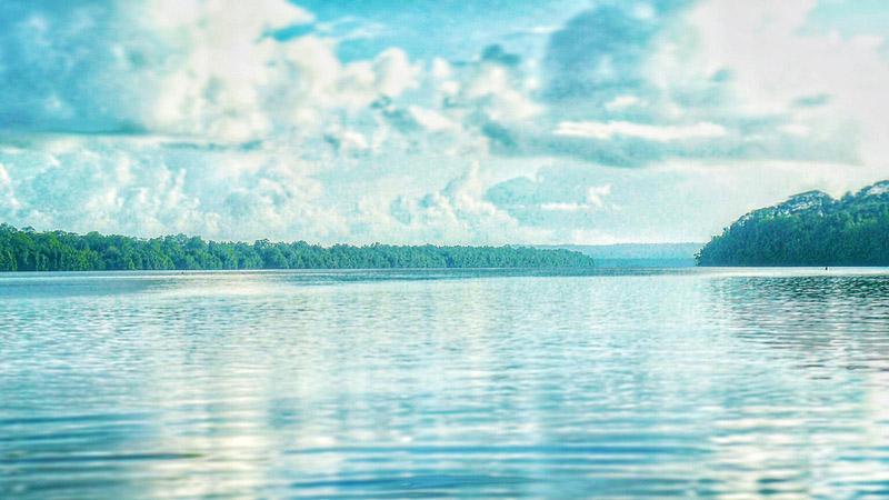 Uitzicht vanaf het water over een brede rivier in de jungle. Sfeerbeeld bij het blog: Veranderen wat je wilt veranderen hoe doe je dat van coach en relatietherapeut Lisette Wevers in Amsterdam